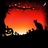 Halloween Illustration With Pumpkins. Vector. Halloween Illustration With Pumpkins, Black Cat, Cemetery And Raven, Vector Illustration Royalty Free Stock Images