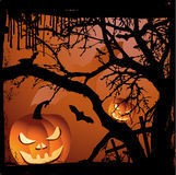 Halloween  illustration scene Stock Image