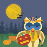 Halloween illustration with smiling owl with a pumpkin in his paws Stock Photos