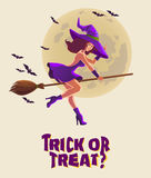 Halloween illustration with witch on broom Stock Photography