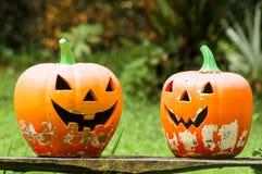 halloween illustrationpumpor ställde in vektorn royaltyfri bild
