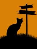 halloween illustrationsilhouette Royaltyfria Foton