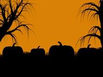 halloween illustrationsilhouette Royaltyfri Bild