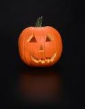 halloween ilustracyjne dynie zestaw wektora Fotografia Royalty Free