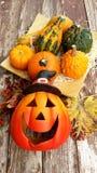 halloween ilustracyjne dynie zestaw wektora Obraz Royalty Free