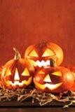 halloween ilustracyjne dynie zestaw wektora Obrazy Stock