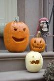 halloween ilustracyjne dynie zestaw wektora Zdjęcia Royalty Free