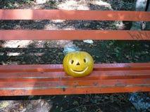 Halloween im Wald Lizenzfreies Stockbild