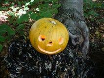 Halloween im Wald Lizenzfreie Stockfotografie