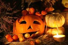 Halloween IV Stock Photo