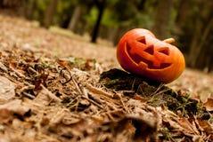 Halloween jack-head Stock Image