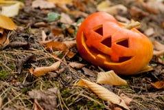 Halloween Jack-Head Royalty Free Stock Photo