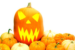Halloween jack o lantern Royalty Free Stock Images