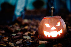 Halloween jack-o-lantern Stock Images