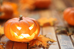Halloween jack o' lantern Royalty Free Stock Photo