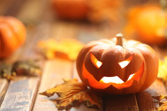 Halloween jack o' lantern. Background Royalty Free Stock Image