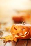 Halloween jack o' lantern Royalty Free Stock Images