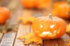 Halloween jack o' lantern background Royalty Free Stock Photo