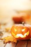Halloween jack o' lantern background Royalty Free Stock Image