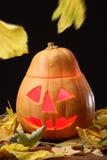 Halloween Jack o Lantern Stock Images