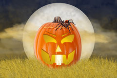 Halloween Jack-O-Lantern in Field with Spider Royalty Free Stock Image