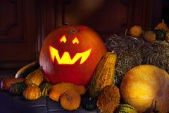 Halloween jack-o-lantern at night Stock Images