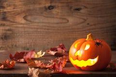 Halloween Jack O Lantern pumpkin spiders Royalty Free Stock Images
