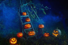 Halloween Jack-o-Lantern pumpkins. In fog Stock Image