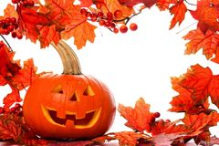Halloween Jack o Lantern and autumn leaves frame on white Stock Images