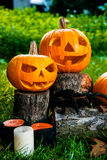 Halloween.  Jack-o-Lantern. scary pumpkin with a smile near candles and spider in green forest, outdoor. Decoration. Stock Photography