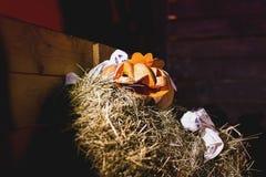 Halloween  jack-o`-lantern Royalty Free Stock Photo