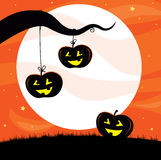 Halloween Jack O'Lantern Tree Royalty Free Stock Photography