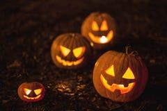 Halloween jack-o-lanterns Stock Image