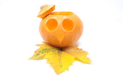 Halloween, Jack O`Latern. Stock Photos