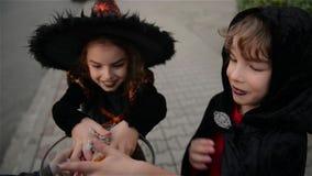 Halloween, Jonge geitjes wil Halloween-Suikergoed, Kinderen die heksenkostuums met hoeden, Jonge geitjestruc dragen of behandelt stock videobeelden