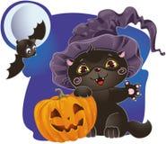 Halloween-Kätzchen mit Kürbis Lizenzfreie Stockfotografie
