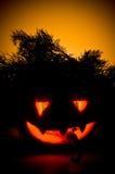 Halloween-Kürbis. Stockbilder