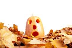 Halloween-Kürbis auf dem Herbstlaub lokalisiert auf weißem Hintergrund Lizenzfreies Stockbild