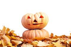 Halloween-Kürbis auf dem Herbstlaub lokalisiert auf weißem Hintergrund Lizenzfreie Stockbilder