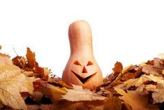 Halloween-Kürbis auf dem Herbstlaub lokalisiert auf weißem Hintergrund Stockbilder