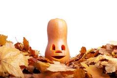 Halloween-Kürbis auf dem Herbstlaub lokalisiert auf weißem Hintergrund Stockfotografie