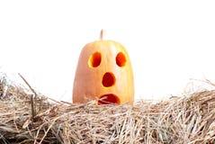 Halloween-Kürbis auf dem Heu auf einem weißen Hintergrund lokalisiert Stockfotos