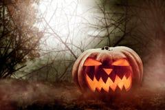 Halloween-Kürbis auf dem Wald Stockfoto