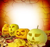 Halloween-Kürbis auf Fallblättern Stockfotos