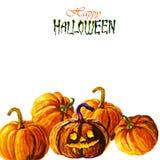 Halloween-Kürbis auf Weiß vektor abbildung
