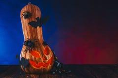 Halloween-Kürbis in einem Spinnennetz mit Bonbons und dunkler Beleuchtung Süßes sonst gibt's Saures Konzept auf blauem und rotem  Lizenzfreie Stockbilder