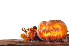 Halloween-Kürbis getrennt auf weißem Hintergrund Stockbild