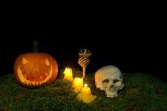 Halloween-Kürbis, menschlicher Schädel, Becher und Kerzen, die in Th glühen Lizenzfreies Stockbild
