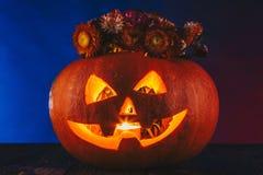 Halloween-Kürbis mit Blumen in der dunklen Beleuchtung Süßes sonst gibt's Saures Konzept auf blauem und rotem Hintergrund Stockfotografie