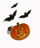Halloween-Kürbis mit Hieben und Spinne. vektor abbildung